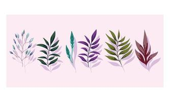Zweige Laub. Flora Grün Natur Design