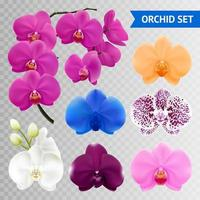 orkidé transparent uppsättning