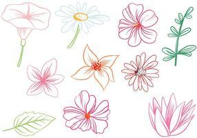 Free Flowers Vektoren