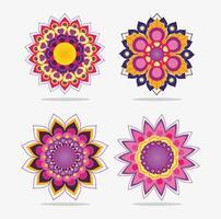 mandala blommor designuppsättning vektor