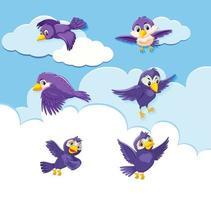 uppsättning fågelkaraktär på himmelbakgrund