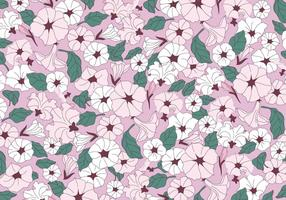 Petunia rosa blommor vektor