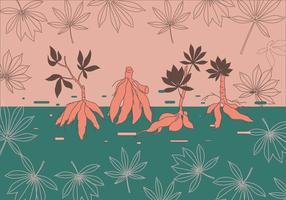 Cassava Pflanze Vektor