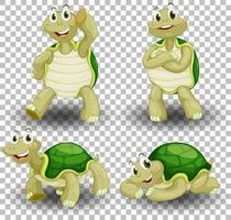 uppsättning söt sköldpadda på transparent bakgrund