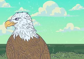 Wild Eagle Vector Hintergrund