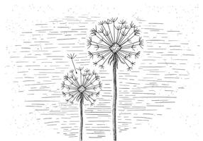 Free Vector Blume Illustration