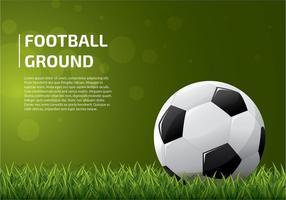 Fotbollsplan mall vektor