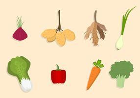 Platta Vegetabiliska Vektorer
