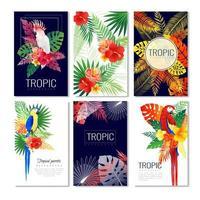 tropiska lövverk och papegojor affischuppsättning vektor