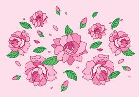 Camelliablomman vektor