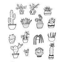 handritad kaktus och suckulenter