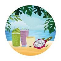 tropisk frukt och smoothiedryck vektor