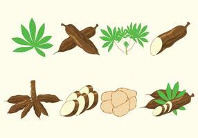 Cassava Vektoren Icon