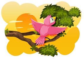 Vogel in der Natur Sonnenuntergangsszene