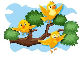 glada gula fåglar som flyger i naturen