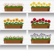uppsättning växter på hyllorna vektor