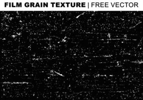 Film Grain Textur Free Vector