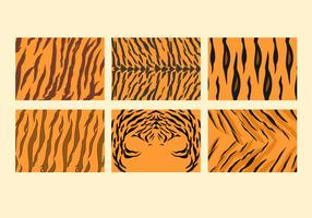 Fria Tiger randmönster vektorer