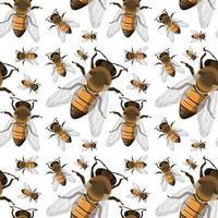 nahtloser Hintergrund des Bieneninsekts vektor