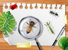 olika insekter på bordet på nära håll vektor
