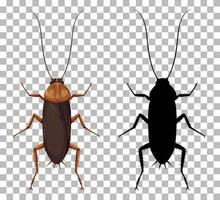 Kakerlake mit ihrer Silhouette isoliert