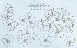 samling av vackra blommor
