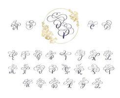 handskriven borst stil modern kalligrafi set vektor