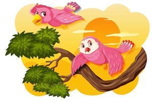 Vogel in einer Natursonnenuntergangsszene