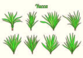Set Yucca Vektoren
