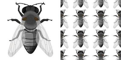 Fliegeninsekten isoliert auf weißem Hintergrund und nahtlos