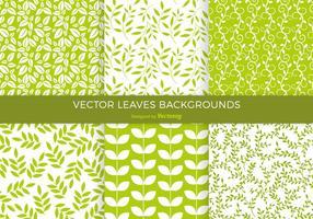 Gröna blad bakgrund vektor Pack