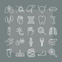 Anatomie- und Gesundheitssymbolsatz des menschlichen Körpers