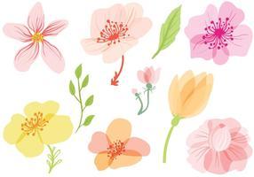 Freie Frühlings-Blumen-Vektoren