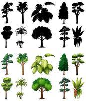 uppsättning träd med dess silhuetter vektor