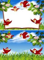 uppsättning av röd fågel i naturen