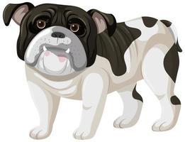 Boxer-Cartoon-Stil auf weißem Hintergrund vektor