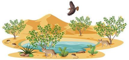 Kreosotbuschpflanze in der wilden Wüste mit Vogel