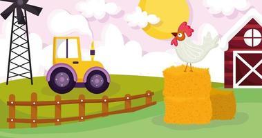 söta djur på en gård