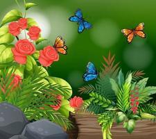 bakgrundsscen med rosor och fjärilar vektor