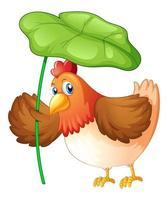 Huhn, das grünes Blatt auf weißem Hintergrund hält