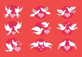 Dove oder Paloma Liebes-Symbole der minimalistischen Stil Vektoren