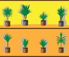 Yucca-Baum im Blumentopf vektor