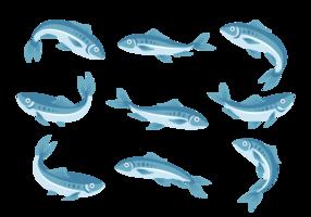 Sardine ikoner Vector