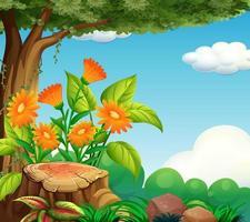 bakgrundsscen med naturtema