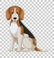 Beagle in sitzender Position Zeichentrickfigur lokalisiert auf transparentem Hintergrund