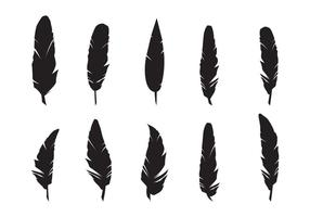 Fjädrar Silhouette Vector Set