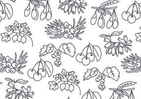 Baum-Samen und Beeren-Muster-Vektor