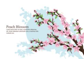 Peach Blossom Vector Illustration