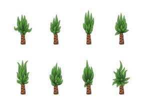 Yucca Vektor
