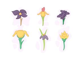 Gratis Beautiful Iris Flower Vector